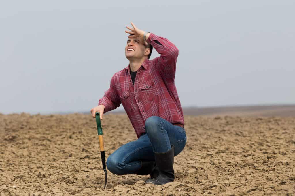 farmer hidden cost of waiting