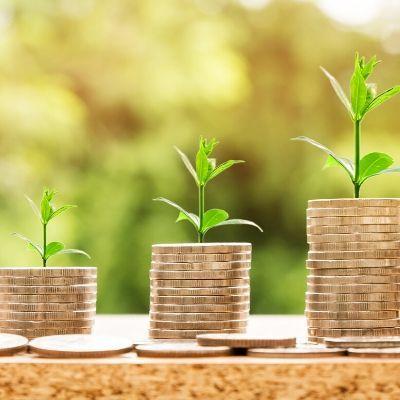 ROI - return on website investment